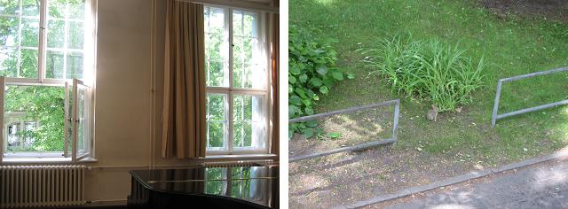 (左)レッスン室兼練習室の外には、緑がいっぱい。窓を開けると、楽器の音に応えるように小鳥のさえずりが・・・。(右)下を覗くと、あっ、子ウサギ! 休憩中の楽しみのひとつです。